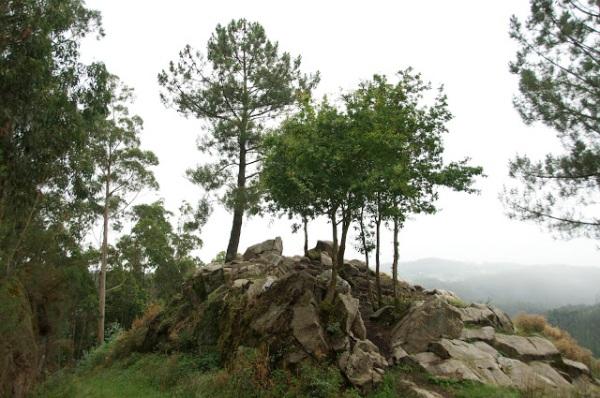 Tradición Celta - Diosa Navia