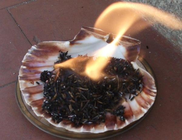 Rituales para entrar bien en el a o nuevo rituales para - Limpiar casas por horas ...