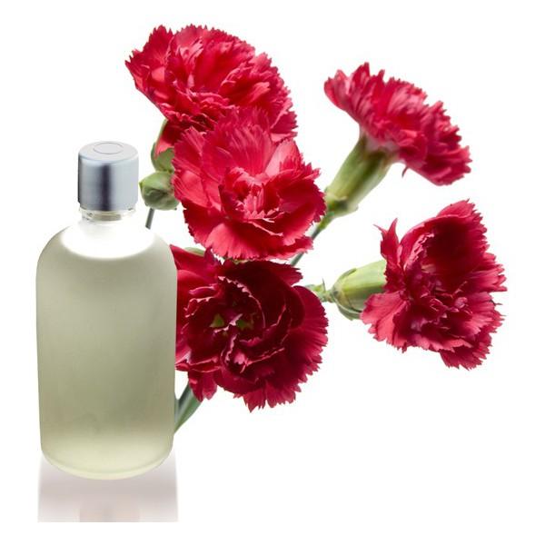 donde-comprar-esencia-aromatica-de-clavel