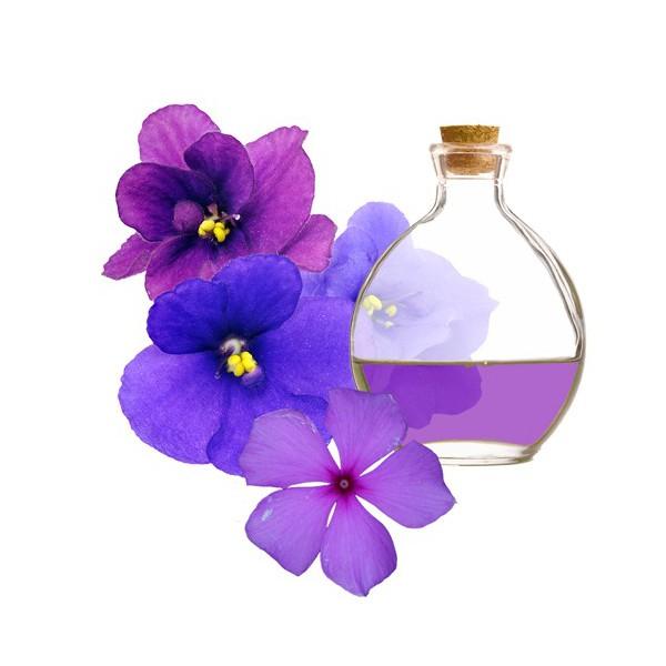 esencia-de-violetas
